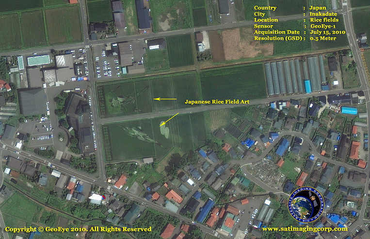 GeoEye-1 Satellite Image of Tanbo Art in Inakadate, Japan