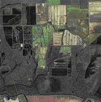 Satellite Image of the Cosumnes River Preserve