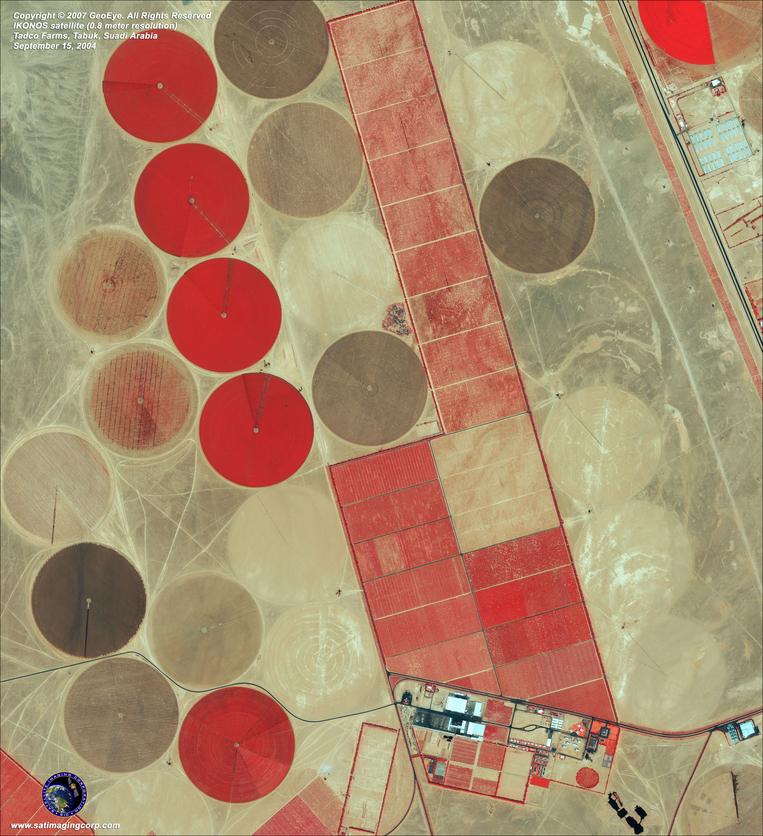 Satellite Photo - Tadco Farms, Saudi Arabia