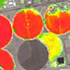 Sentinel-2A Agriculture Mapping