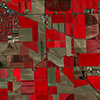 Dove Satellite Photo Agriculture Fields Twin Falls Idaho