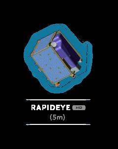 RapidEye